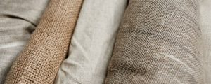 Better Cotton Initiative (BCI): A Complete Guide