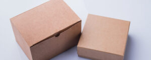 Biodegradable Packaging Manufacturers in China