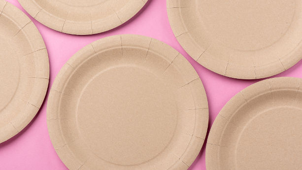 Sugarcane Bagasse Food Contact Products
